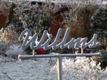 Gartenhaus-im-Winter